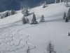 mauthner-alm_lawine_feb10_1